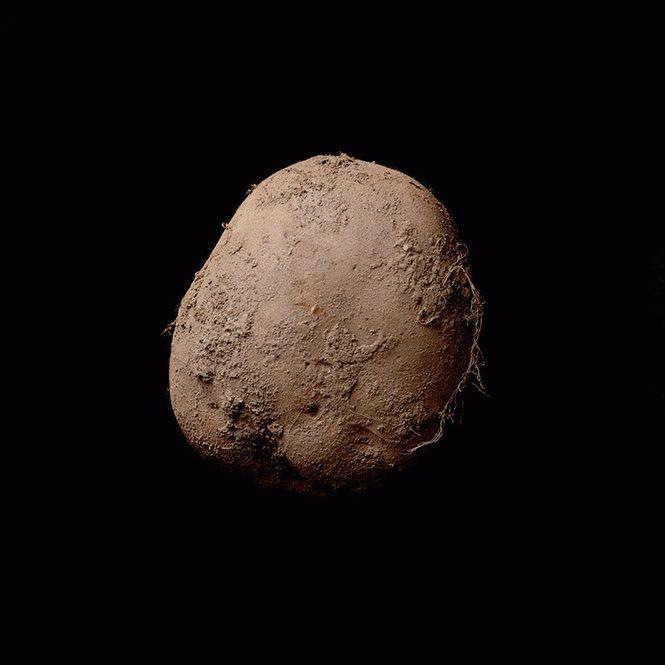 Картопля за мільйон доларів !