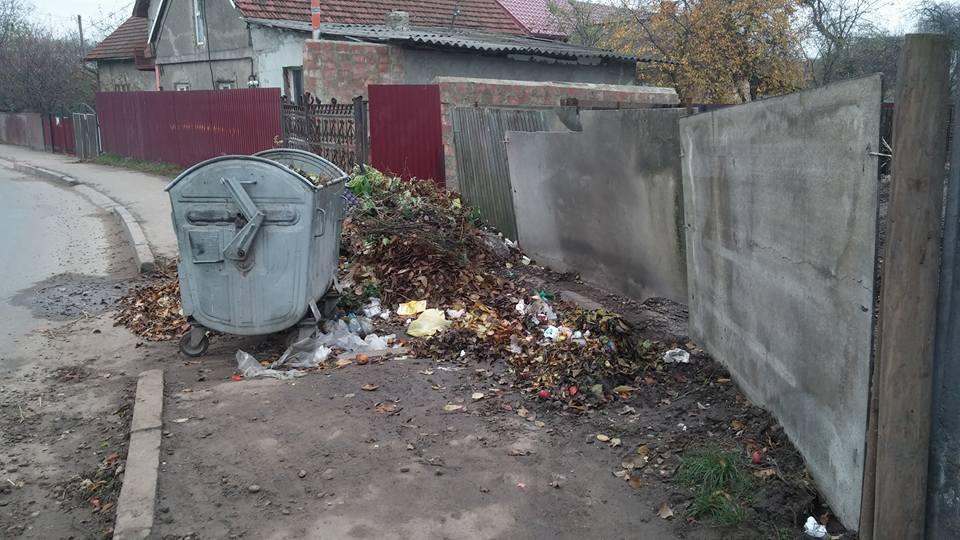 smittya_vynnychenka