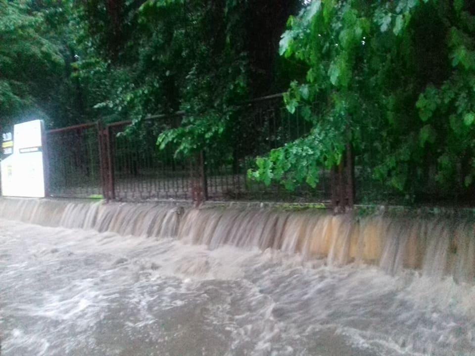парк_потоп