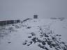 У Карпатах сьогодні випав сніг (фото)